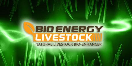livestock01-460